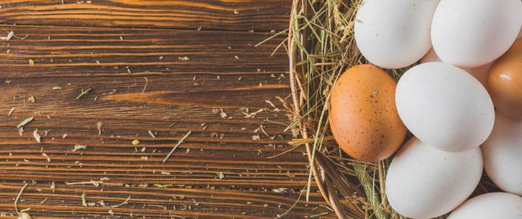 huevos gallinas jaula leclerc